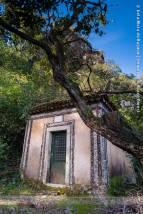 Paredes, caminhos e árvores ancestrais | Ancestral walls, paths and trees