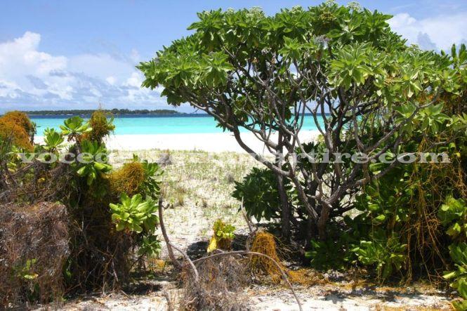 5 cose da fare alle maldive