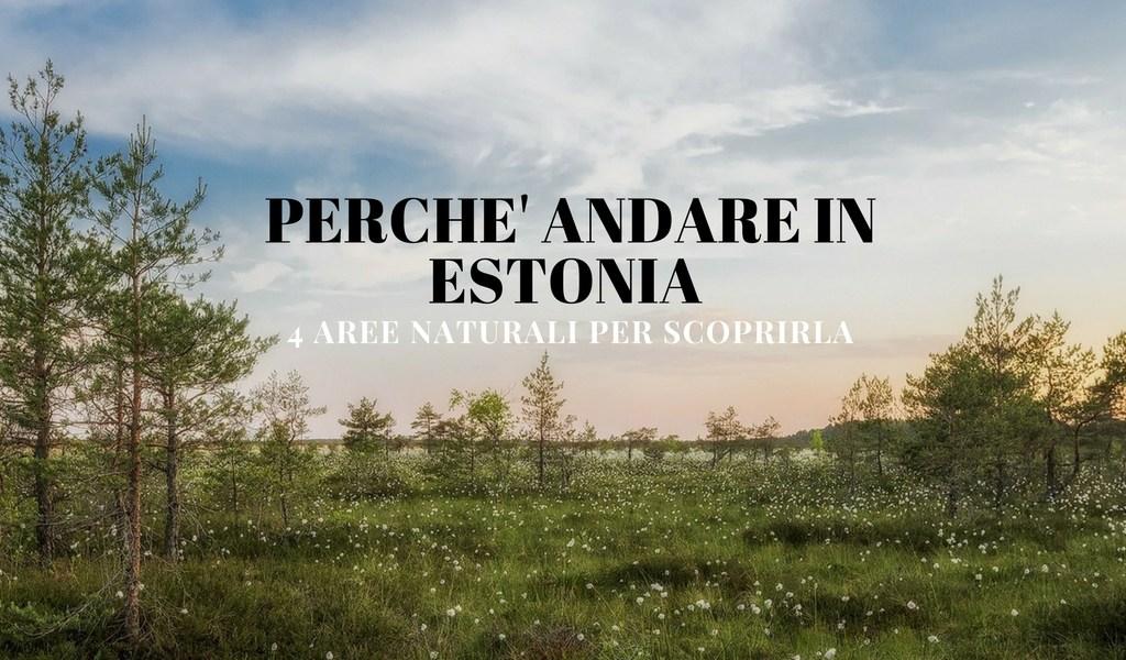 perché andare in Estonia
