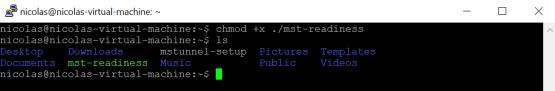 Make file executable
