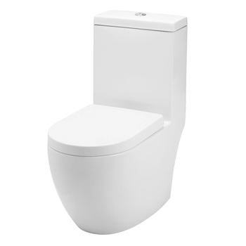 Baron W888 One Piece Dual Flush WC
