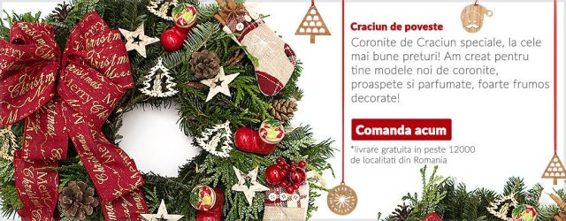 coronite-de-craciun-a6
