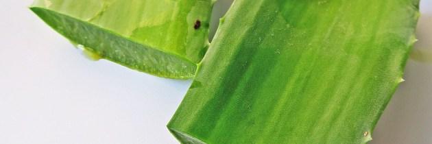 4 remedii cu Aloe Vera pentru pungile de sub ochi