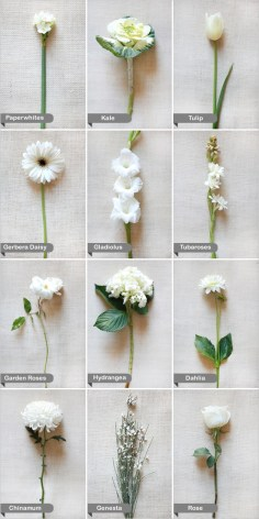 wedding-flower-guide