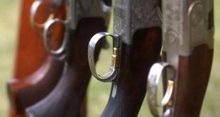 Recepimento direttiva armi