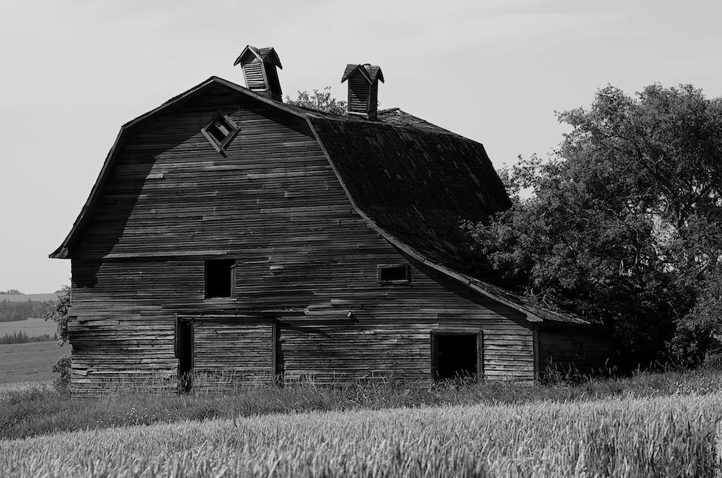 Portrait of a Barn