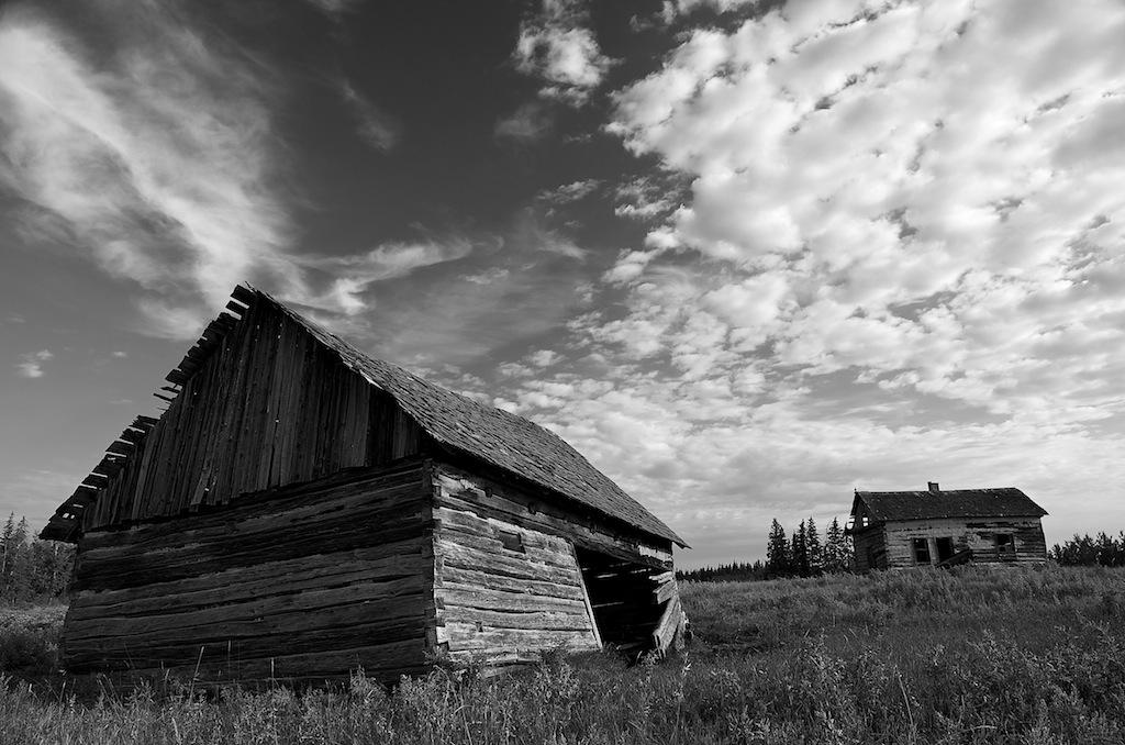 Settler's Pioneer Cabins