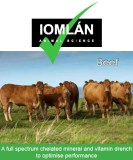 Iomlán Beef drench