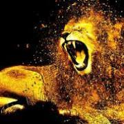 sole in leone