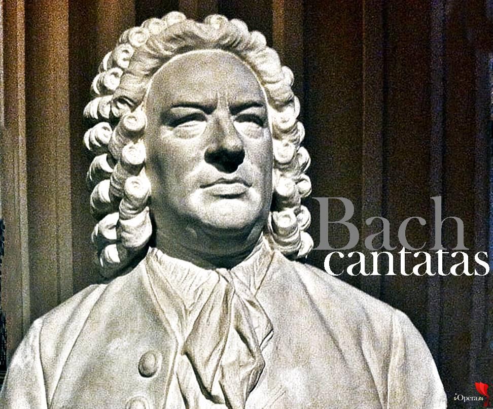 Giovanni Antonini dirige Bach vídeo cantata