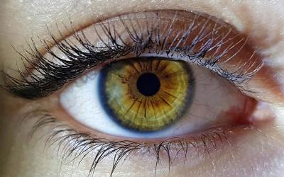Retinosis pigmentaria, ¿qué es?