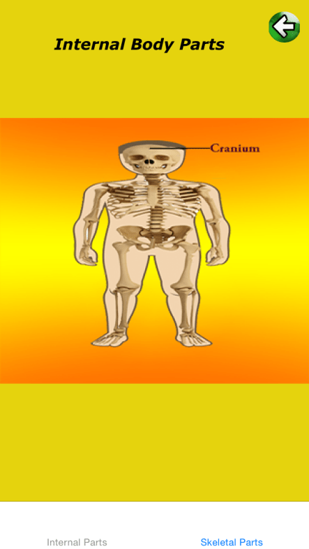 Body Parts Internal Is A Great Ios App For Teaching Kids About The