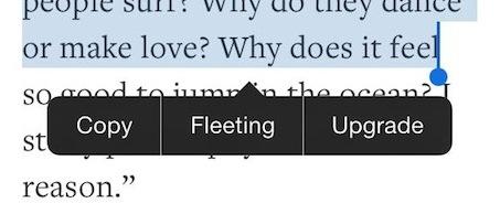 fleeting-tweak