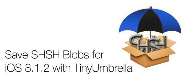 TinyUmbrella SHSH blobs guide