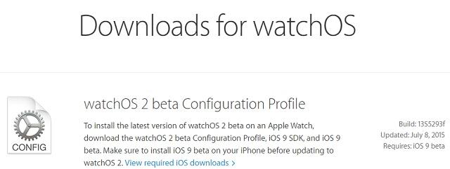 watchOS beta