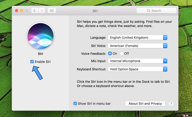 siri-mac-settings