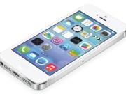 Botón Home con el sensor de huellas dactilares-iphone-5s