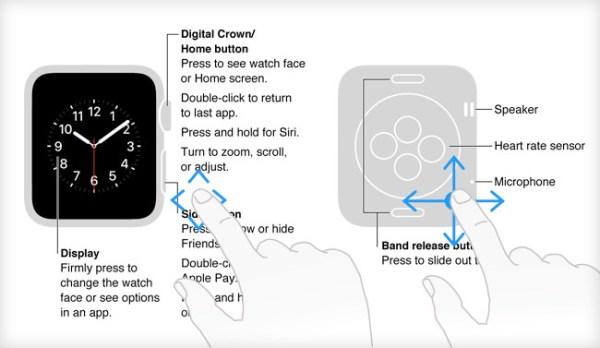 apple watch diagrama