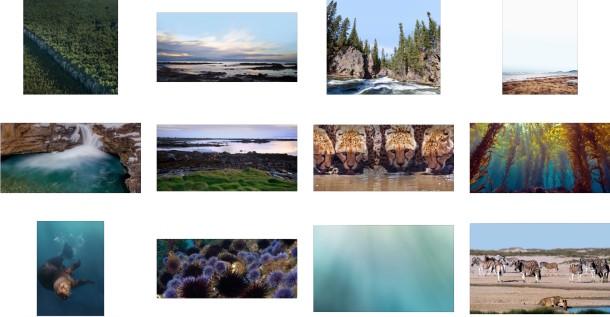 12 fondos de pantalla o wallpapers de Apple para el Día de la Tierra