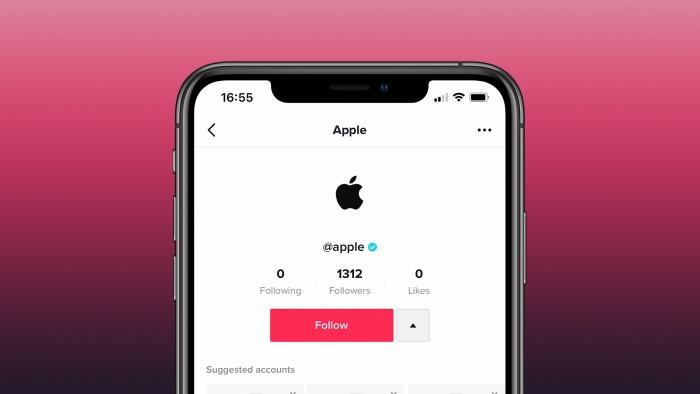 Apple-TikTok