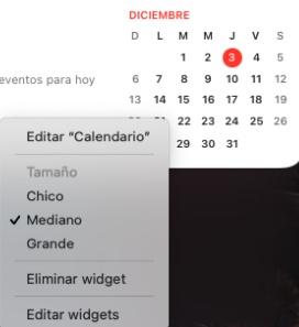 Personalizar contenido del widget