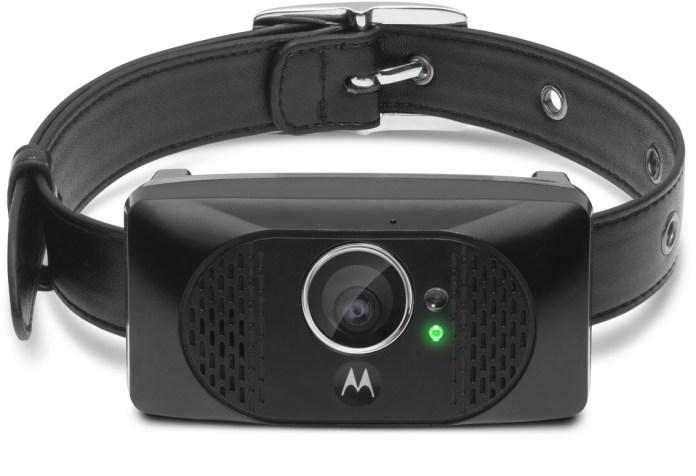 Motorola Scout