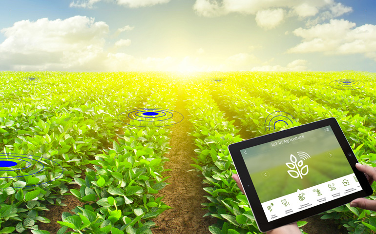 a career analysis agriculture Latest news and information from the world bank and its development work in indonesia access indonesia's economy facts, statistics, project information, development research from experts and latest news.