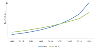 north_america_healthcare_cloud_computing_market_by_end_user
