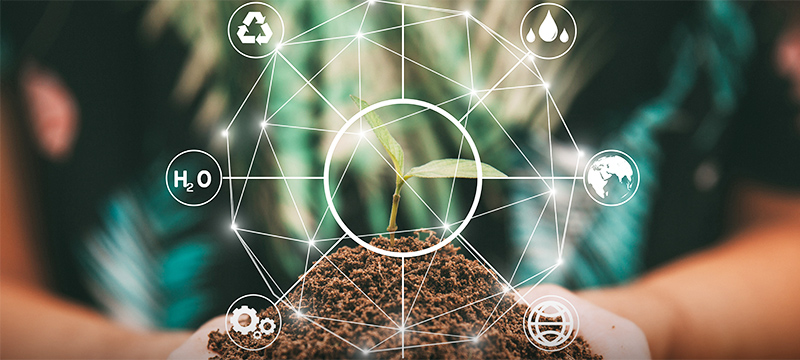 IoT and the environment: the green enterprise
