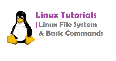 Linux Basic Commands