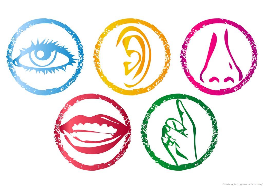5-senses.jpg