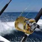 Sport Fishing in Palm Beach