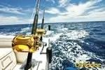 fishing florida gulf fishing