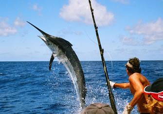 Daytona Beach Fishing