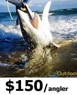 Shark Fishing in Miami