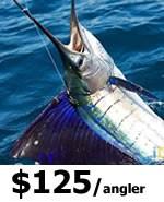 Miami Sport Fishing