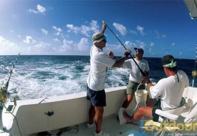 Florida Sport Fishing Charters