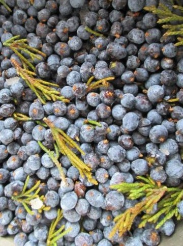 Cedar Berries Herbalism | Iowa Herbalist