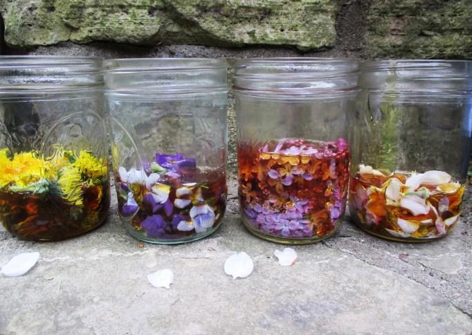 Honeyed Flowers in Jar | Deer Nation Herbs