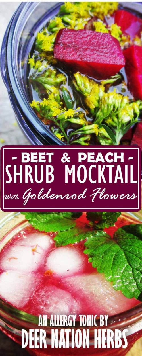 Nothing beats a tasty allergy tonic in the form of a shrub mocktail - that is, one containing beets, peaches, and goldenrod. Learn how to make it here.