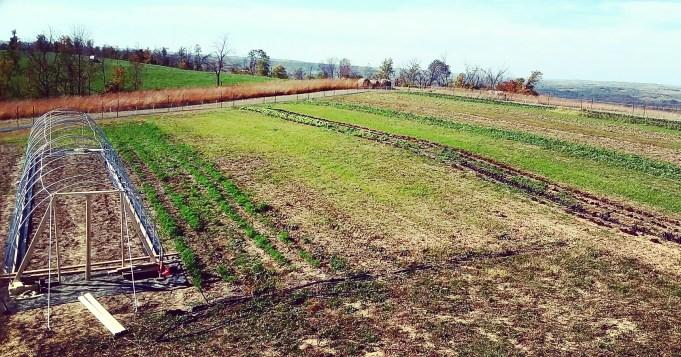 Farm Panorama | Jupiter Ridge Farm