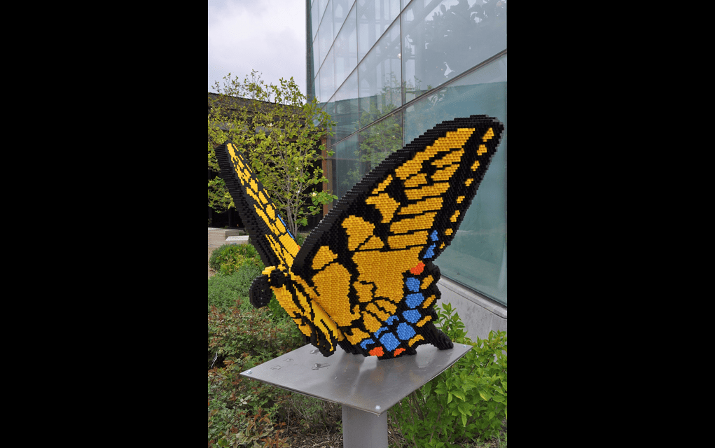 Former Reiman Gardens Director, ISU Sue Each Other over Lego Art Dispute [Updated]