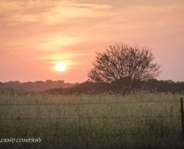 Sell Iowa Farmland