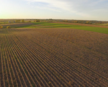 Clarke County Land Auction
