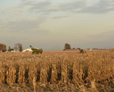 Grain Cart1