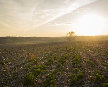 Hardin County Iowa Farmland Values