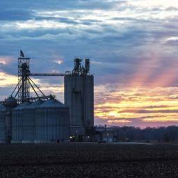 Marshall County Iowa Farmland Values