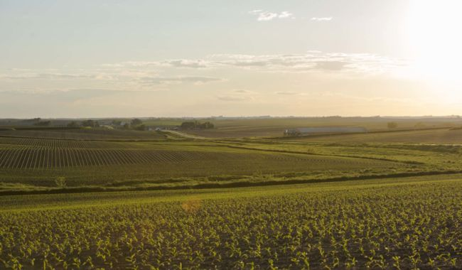 Tama County Iowa Farmland Values