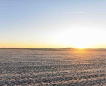 Southwest Iowa Land Values