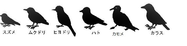 ものさし鳥